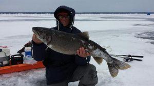 lake-trout-simcoe-jan-2015