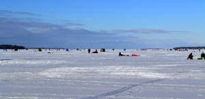 Lake Simcoe, Cook's Bay - January 21, 2012
